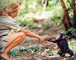 Copyright © Jane Goodall Institute of Canada